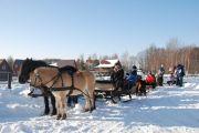 KULIGI NA KASZUBACH Pomorskie,kulig,konie,Kartuzy,Szymbark