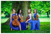 Kwartet smyczkowy Simple Quartet