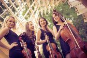 Kwartet smyczkowy StringArte, Poznań, wielkopolskie