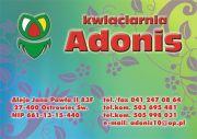 KWIACIARNIA ADONIS