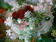 Kwiaciarnia RÓZA