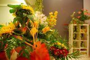 Kwiaciarnia Sunflower