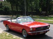 Mustang VIP