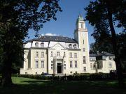 Pałac Borowa