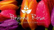 Poranna Rosa