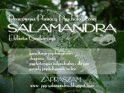 Pracownia Pomocy Psychologicznej SALAMANDRA
