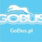 Przewozy na lotnisko Pyrzowice Katowice tanie cennik transport transfery dowozy odbiory samochodem autem busem z kierowcą wynajem - GoBus.pl