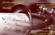 Radeks Usługi Muzyczne