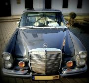 Samochód do ślubu: Mercedes, Czarna Wołga, BMW