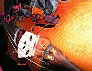 SKRZYPCE, śpiew,organy,trąbka - Profesjonalna oprawa muzyczna uroczystości