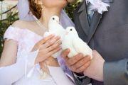 Ślub, wesele - GOŁĘBIE