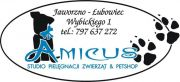 Strzyżenie psów i kotów AMICUS fryzjer dla zwierząt