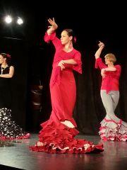 Studio Tańca Flamenco EnVivo