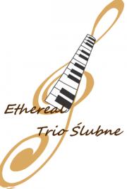 Trio Ślubne Ethereal Oprawa muzyczna ślubu zespół