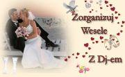 wesela djravi gram w całej polsce 2013/2014