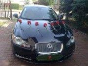 Wynajme nowego Jaguara XF na sluby