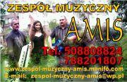 Zespół muzyczny  AMIS