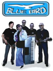 """Zespoł na wesele """"BLUE BIRD"""""""