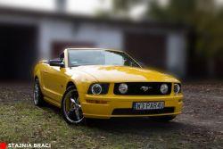 Auta do ślubu - Maluch, Duży Fiat, Polonez, Garbus, Mustang GT, BMW 730xd