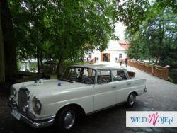 Auto do ślubu Zamość Bukiety ślubne dekoracja kościoła dekoracja sali kwiaty