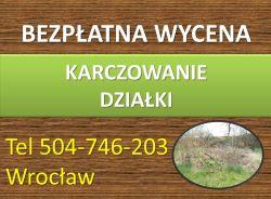 Czyszczenie działek, cennik tel. 504-746-203, karczowanie terenu, Wrocław.