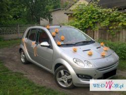 dekoracja na samochód- na przyssawki