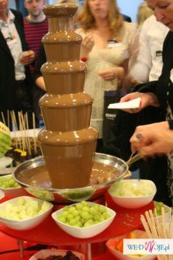 Fontanny czekoladowe, serowe, palmy egoztyczne, bańki mydlane i inne atrakcje