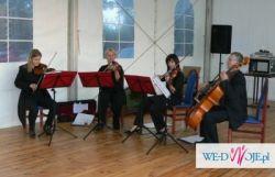 Kwartet Jalousie