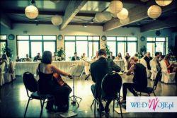 Oprawa Muzyczna Bankiet - Ślub- Jubileusz- Otwarcie -Wernisaż - Wigilia Firmowa
