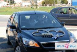 SERCA - ŚLICZNA OZDOBA  NA AUTO