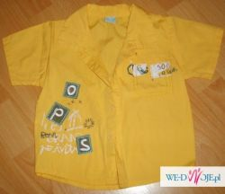 spodnie koszula i spodenki
