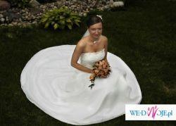 suknia ślubna Eddy K