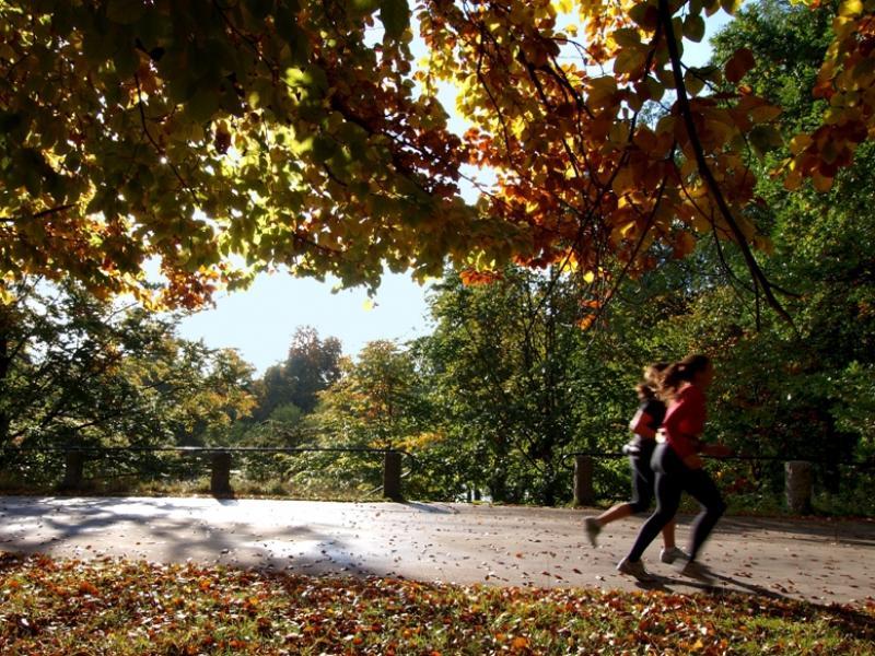 Bieganie - trening podstawowy