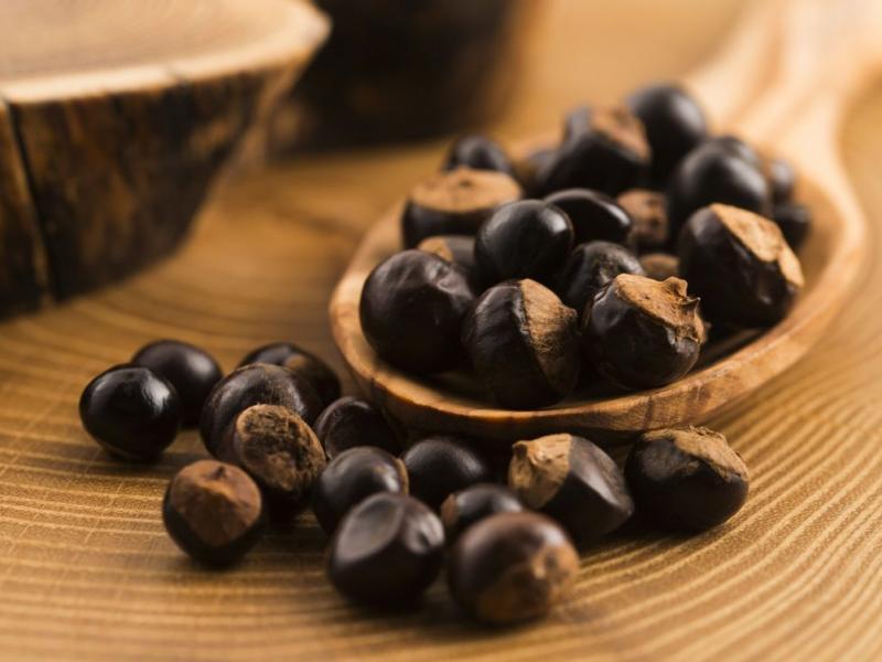 Co działa mocniej niż kawa i jest zdrowe? Poznaj guaranę!