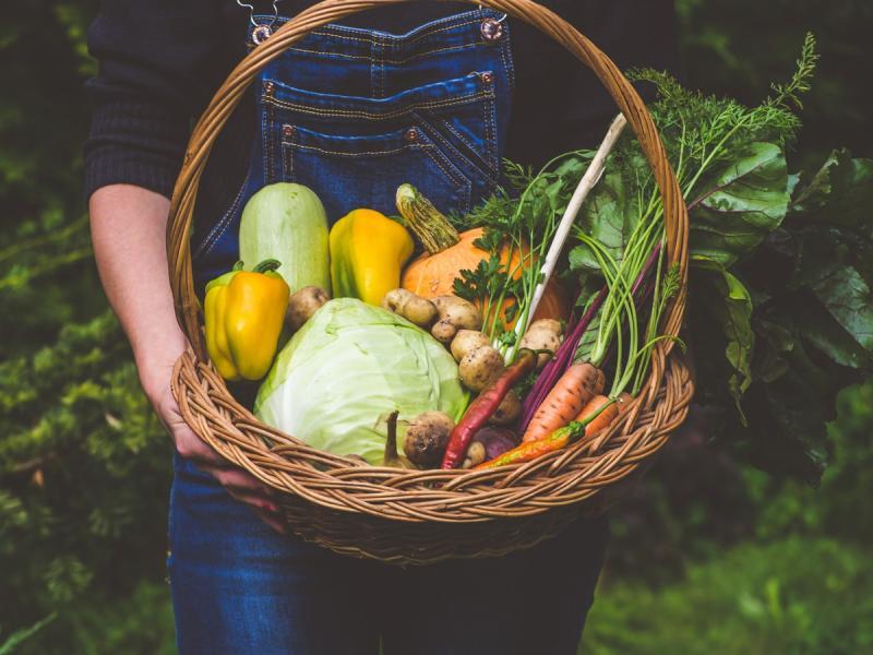 Co powiecie na dietetyczny powrót do korzeni? Dieta paleo to naturalny sposób życia i odżywiana