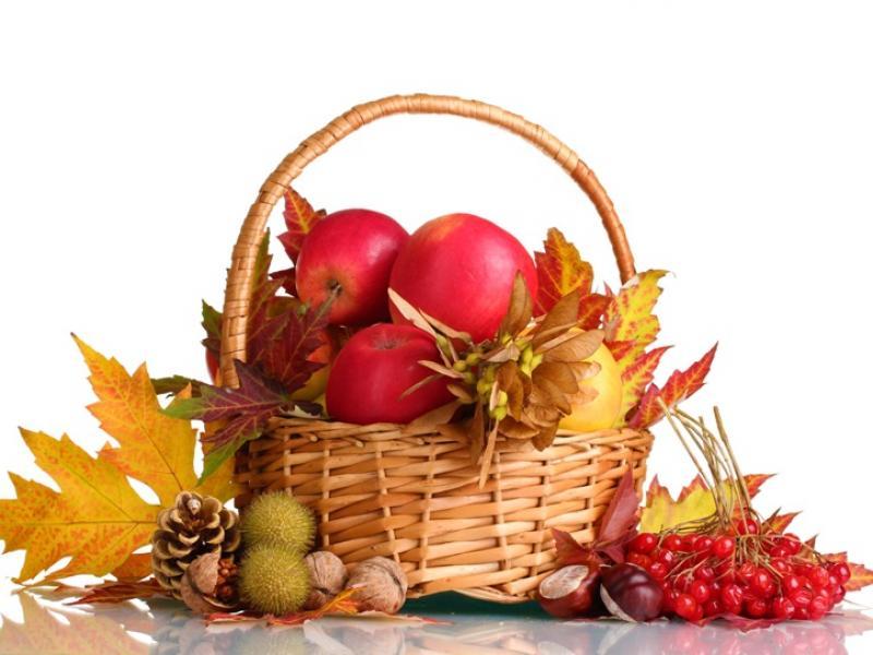 Co warto jeść jesienią?