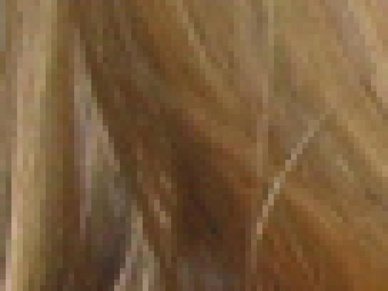 Czy wiesz jak powinnaś dbać o włosy według ich rodzaju?