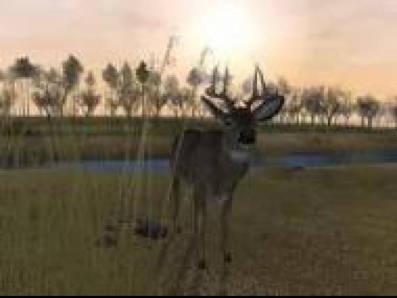 Czy wiesz jak ułatwić sobie grę Deer Hunter: Extended Season?