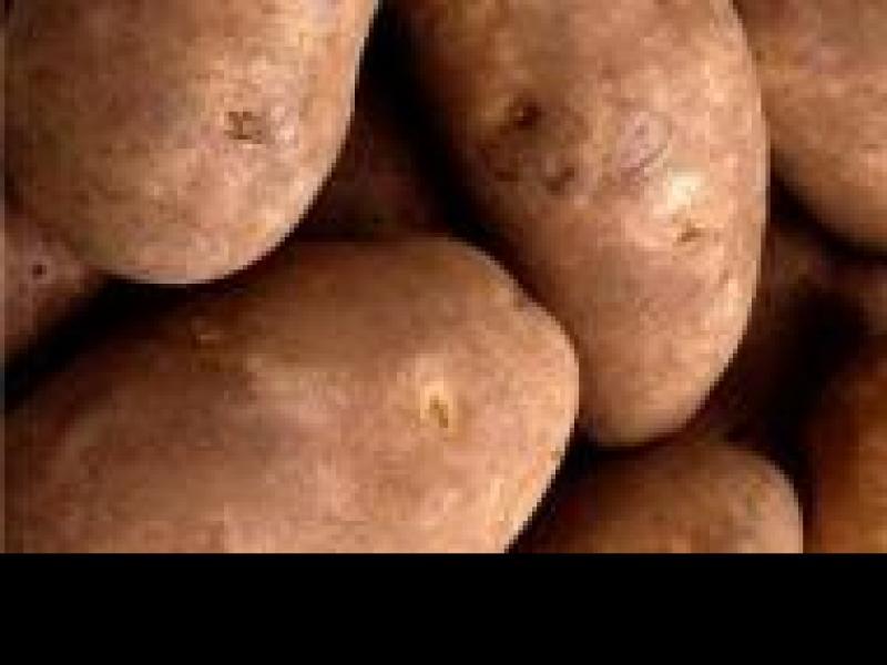 Czy wiesz jak wykorzystać ziemniaka do pielęgnacji urody?