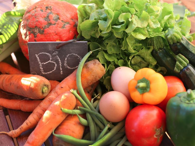 Czy żywnośćekologiczna jest naprawdę zdrowa, czy to tylko nowa moda?