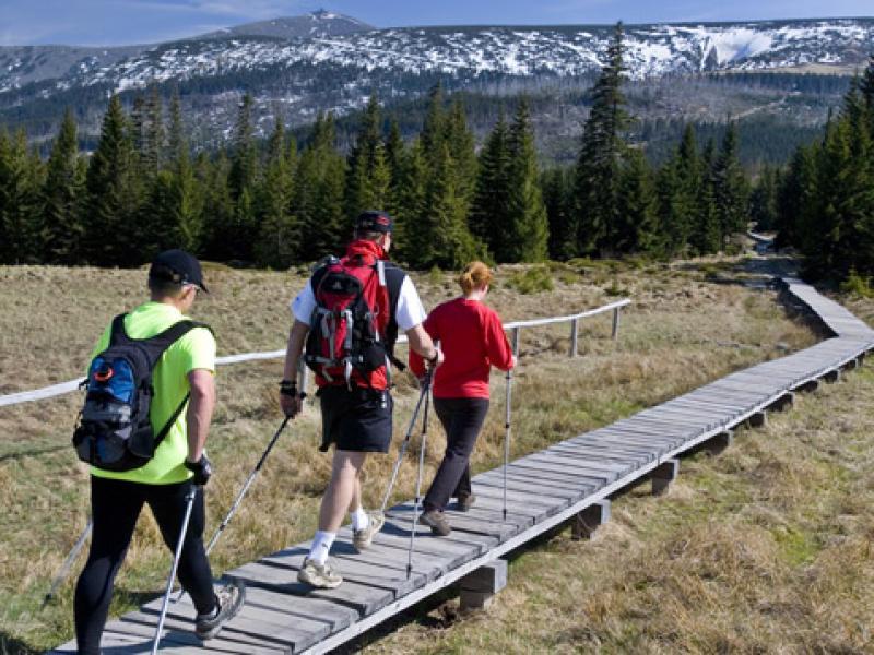 Do tej pory nordic walking był propagowany przede wszystkim w górach i nad morzem.