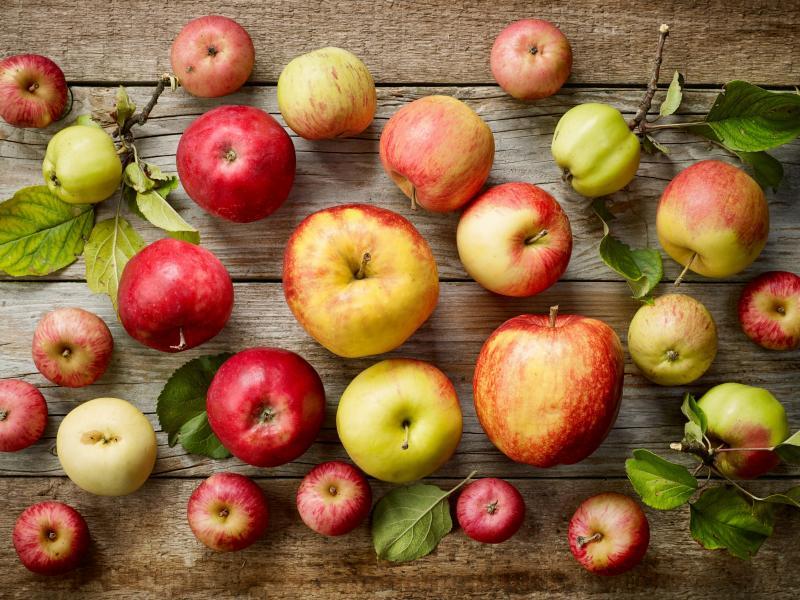 Na drewnianym blacie leżą różne odmiany, gatunki jabłek.