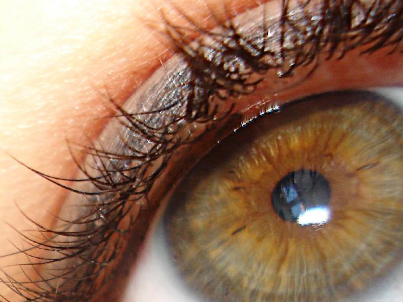 Jakie cienie do zielono-brązowych oczu?