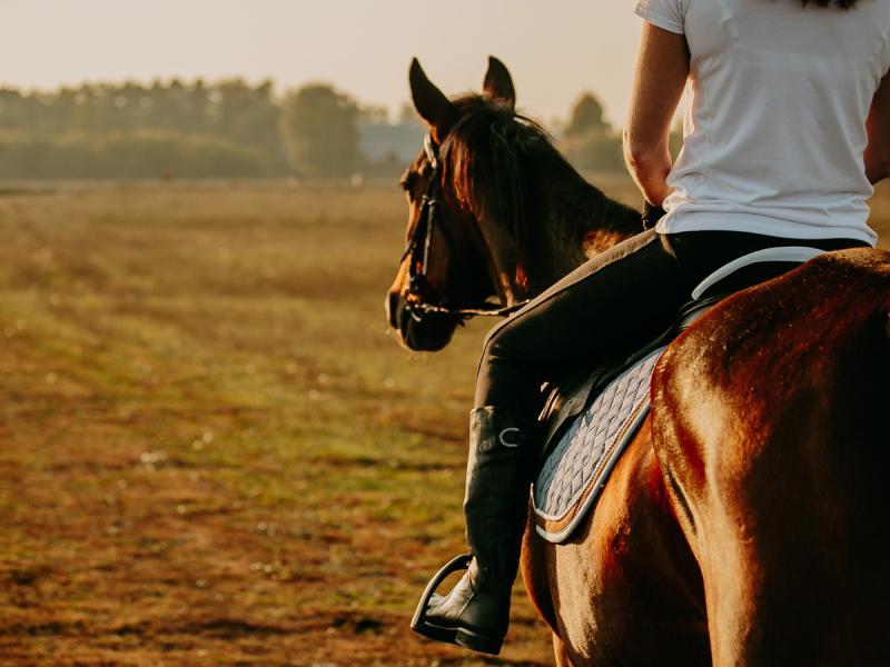 randki jeździeckie