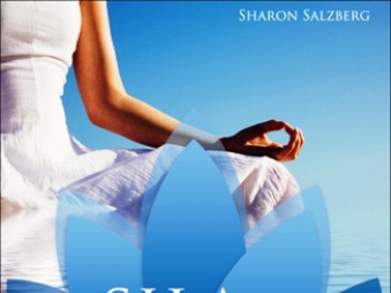 """Książka """"Siła medytacji. 28 dni do szczęścia"""""""