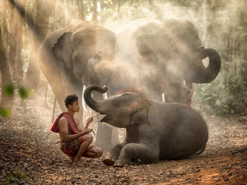 Randki Sri Lanki za darmo