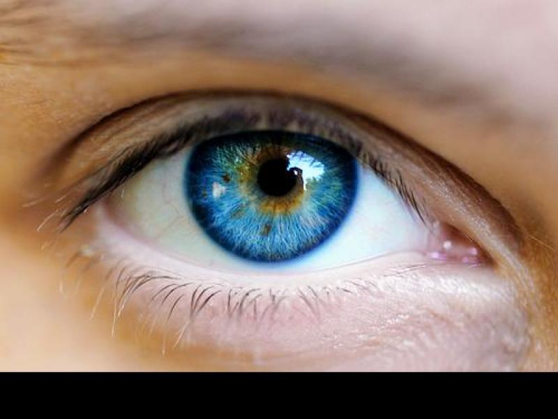 Wpływ codziennej diety na wzrok