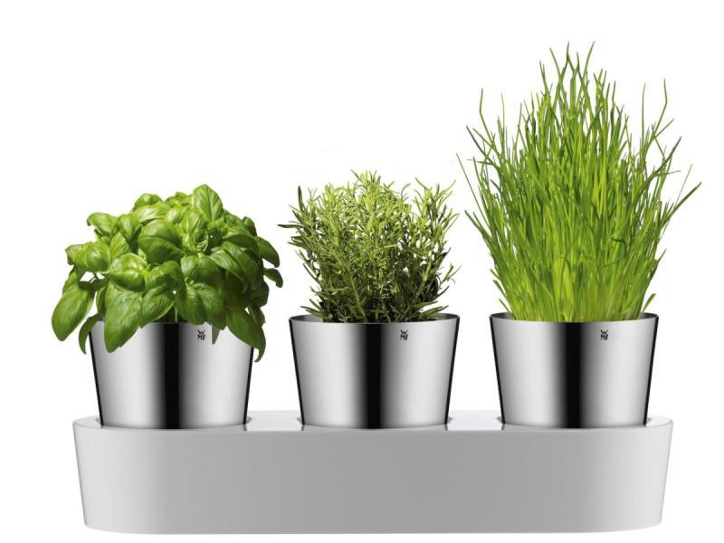 Zestaw doniczek na zioła