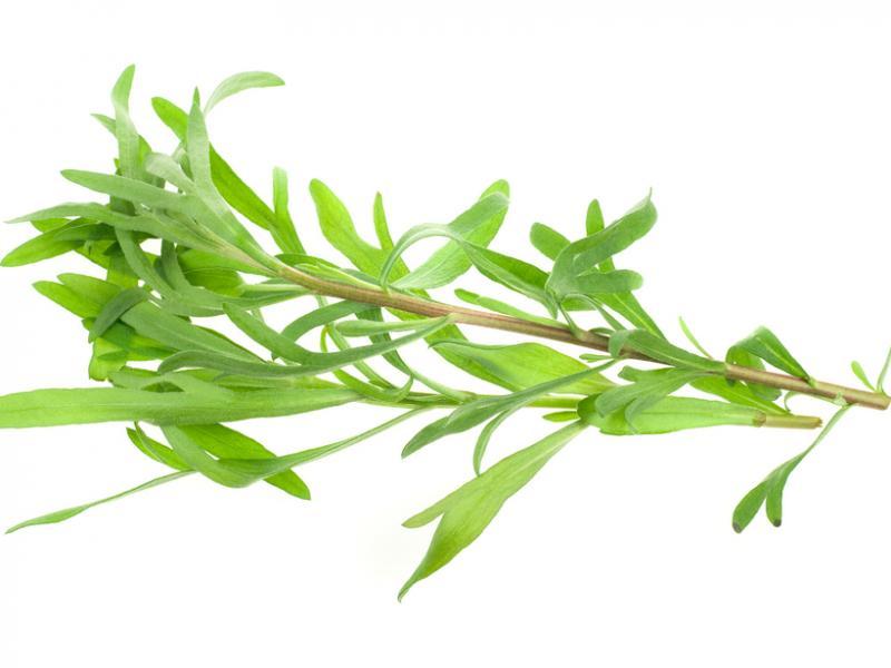 Zielone dodatki w kuchni