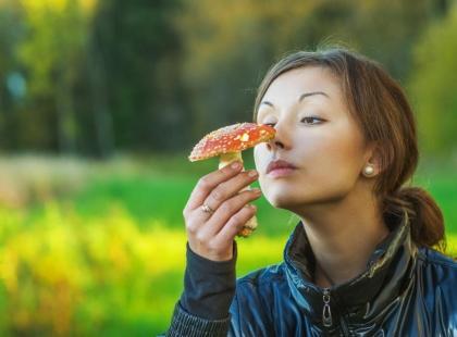 10 rad jak nie zbierać grzybów! Antyporadnik grzybiarza